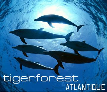 Atlantique, by Tigerforest on OurStage