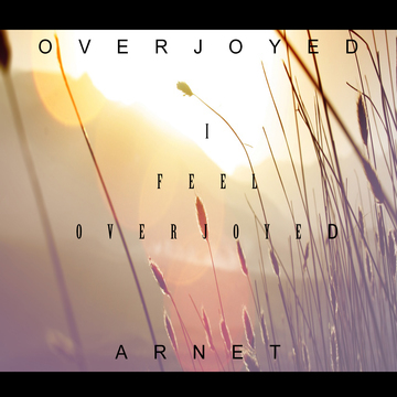 Overjoyed (Original Mix), by Arnet on OurStage