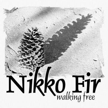 Build No Barn, by Nikko Fir on OurStage