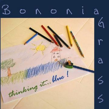 Blue Night, by Bononia Grass on OurStage