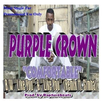 Like You, by  Purple Crown (produced by Rapturebeats) on OurStage