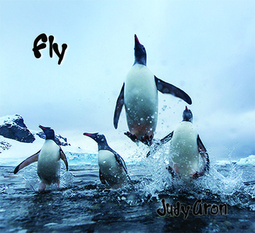 Fly, by Judy Aron on OurStage