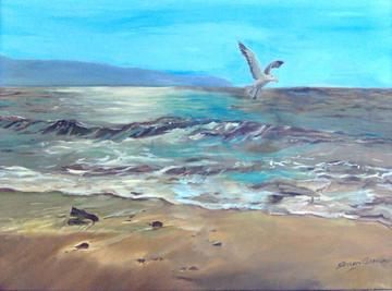 Seagull, by Catfish Bernie Meise on OurStage