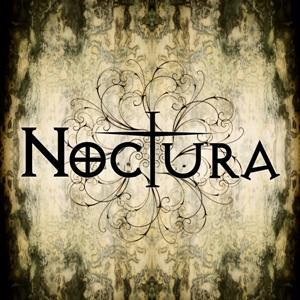 Don't Save Me, by Noctura on OurStage