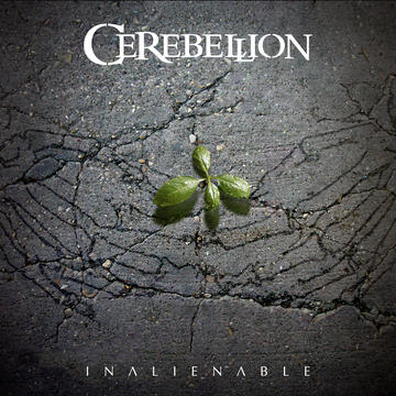 Embrace the Imperfection, by Cerebellion on OurStage