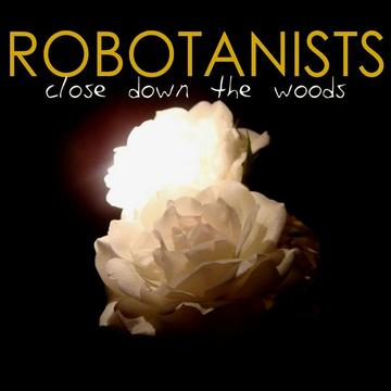Wait a Minute Here, by Robotanists on OurStage