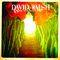 Point of View, by David Walsh & The Friendly Fire on OurStage