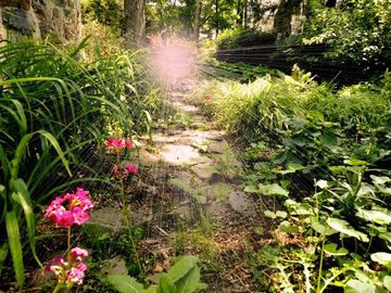 That Primrose Path, by Louie Blue on OurStage