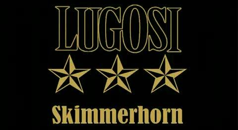 Skimmerhorn, by Lugosi (NL) on OurStage