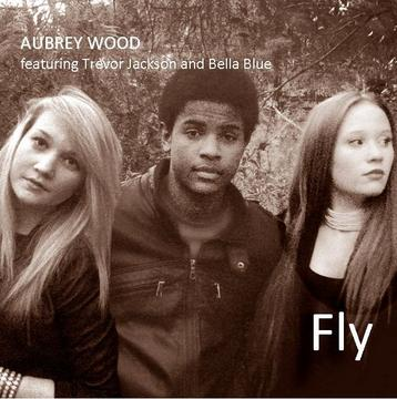 Fly, by Aubrey Wood on OurStage
