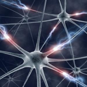 Neurologic (Live improvisation), by Genetic Dysfunction on OurStage