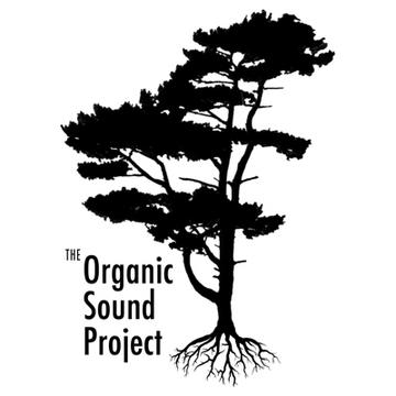 Gasoline, by The Organic Sound Project on OurStage