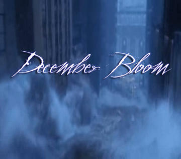 December Bloom, by Kill Your Name on OurStage