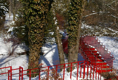Sculptures and Snowy Scenes at Dow Gardens, by David Waldman on OurStage