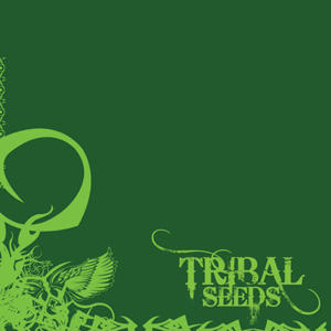 Beautiful Mysterious, by Tribal Seeds on OurStage