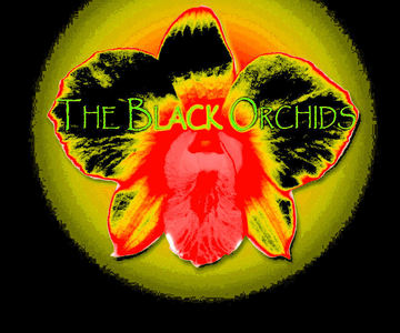 summertime dreams, by THE BLACK ORCHIDS on OurStage