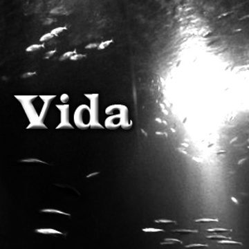 Vida, by JtMpS on OurStage
