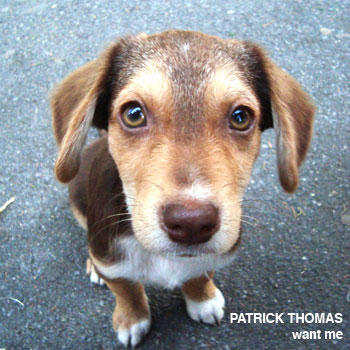 Want Me, by Patrick Thomas on OurStage