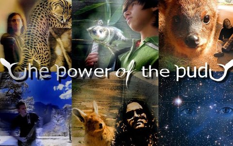 Oda al Pudú, by The Power Of The Pudú on OurStage