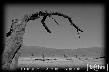 Desolate Grip, by Faethm on OurStage