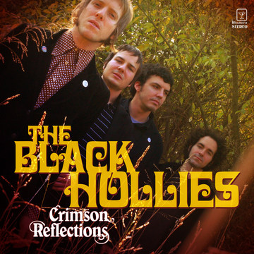 You've Been Gone Too Long, by The Black Hollies on OurStage