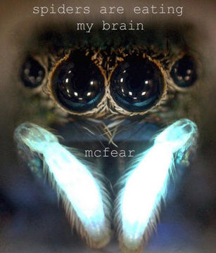 Spiders Are Eating My Brain, by McFear (NC) on OurStage