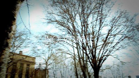 """D'Lyon """"El Salvaje""""-Inolvidable (Official Video), by D'Lyon""""El Salvaje"""" on OurStage"""