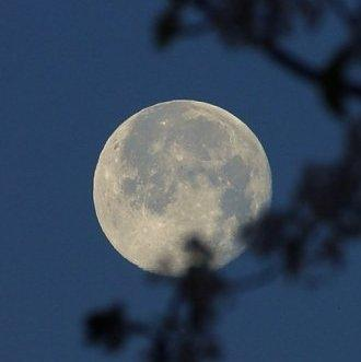 Howlin' at the Moon, by Keith Hinton on OurStage