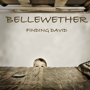 David, by Bellewether on OurStage
