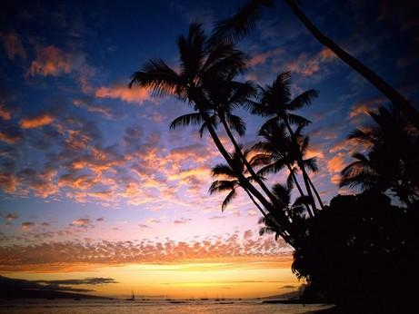Tropical Night, by Helder Rock on OurStage