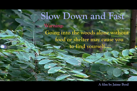 Slow Down and Fast Trailer, by BlindLyleFilms on OurStage