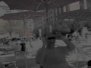 Sarah Palin Tribute at Woodrow Wilson Plaza!, by Michael Blumenstock, David Blumenstock, Eric Maring on OurStage