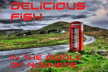 Melancholy Merit, by Delicious Fish on OurStage