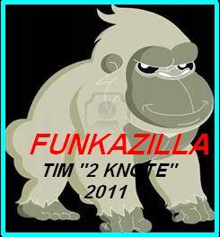 """FUnkAziLLa, by TIM """" Hot licks """" on OurStage"""