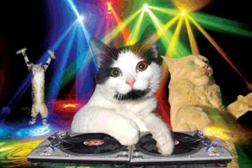 Party Time, by Hootis_B on OurStage