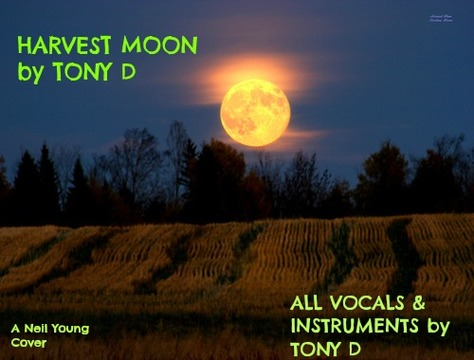 (The Video) HARVEST MOON by TONY D, by TONY D  on OurStage