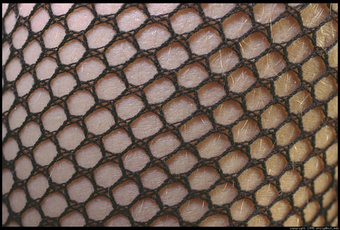 Feeling The Fishnets, by Tim Sanders on OurStage