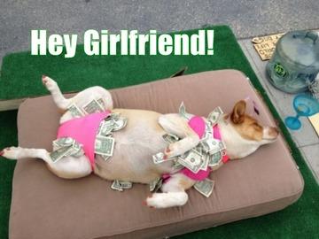 Girlfriend, by www.WanderingDogs.com on OurStage