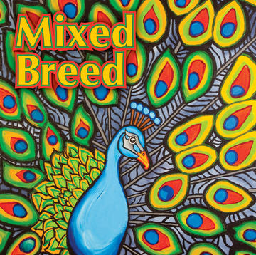 Deja Vu, by Mixed Breed on OurStage