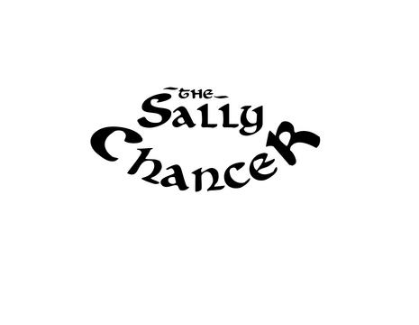 Paper Planes (cover), by the Sally Chancer on OurStage