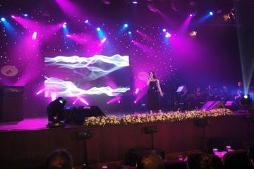 Sometimes, by Christine Ann and The Bassalindos on OurStage