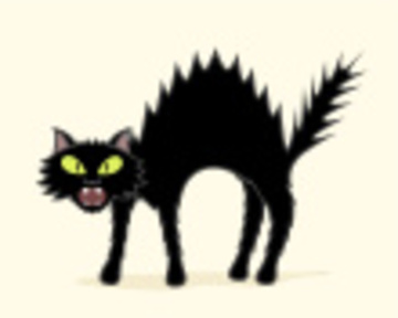 Creepy Cat, by JOHNNY DE on OurStage